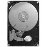 """250GB Maxtor STM3250310AS DiamondMax 21 7200U/m 8MB 3,5"""" (8,9cm) SATA II"""