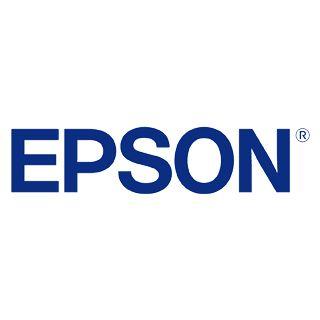 Epson Watercolor Radiant White